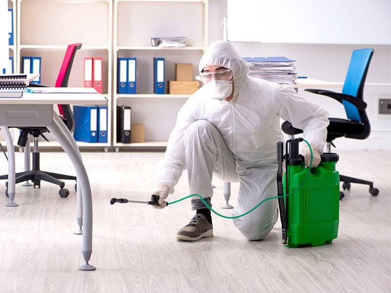 Covid-19 Office Deep Cleaning Service